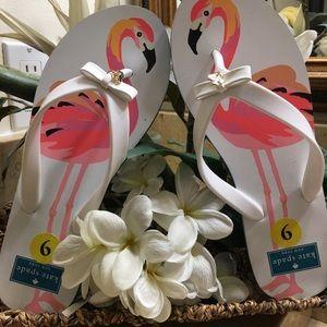 Kate Spade Pink Flamingo Caribbean Blue flip flop